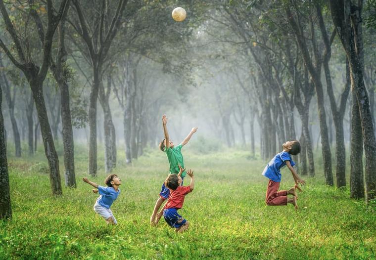 Kinder-spielen-froehlich-auf-einer-Wiese-im-Wald